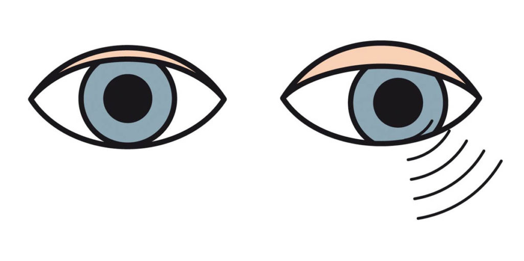 Sinne-Sehen