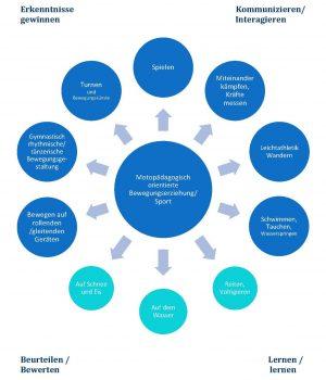 Strukturmodell Fach Sport und Bewegungserziehung